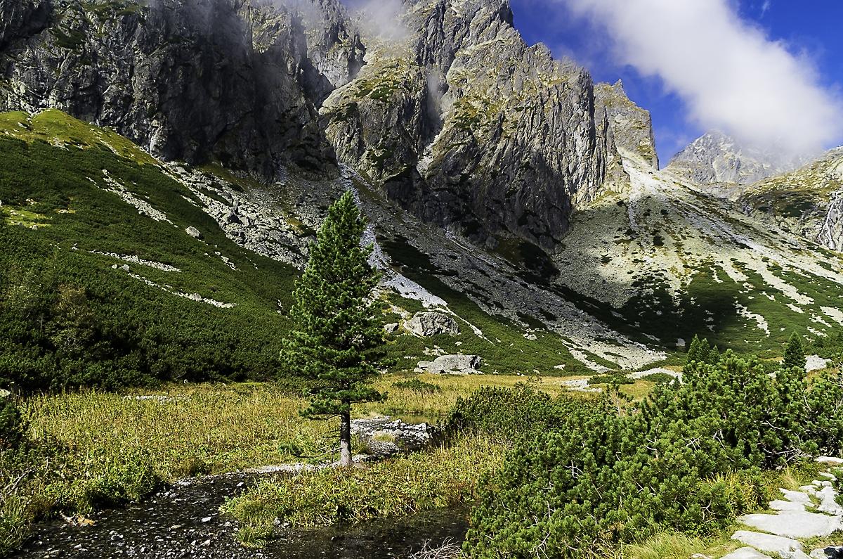 View from Mala Studena dolina