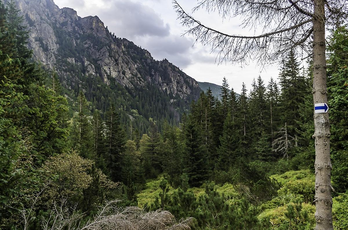 Lower Velka Studen dolina